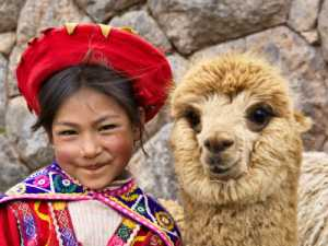 Peruvian girl in traditional clothes with alpaca