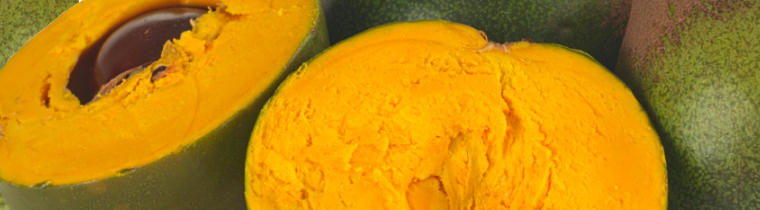 Lucuma, the gold of the Inca's with its delicious caramel sweetness. Bulk Lucuma powder for wholesale export